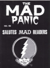 Image of The MAD Panic #45
