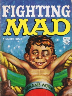 Go to Fighting Mad #11 • USA • 1st Edition - New York