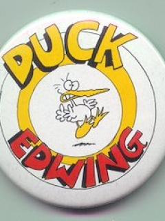 Go to Button Duck Edwing • USA