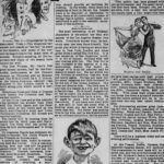 """Newspaper ad for """"The New Boy"""""""